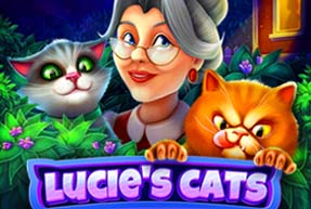 Lucie's cats